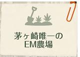 茅ヶ崎唯一のEM農場
